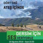 DEDEF Dersim'deki orman yangınlarını protesto etmek için yapacağı eyleme çağrı yaptı